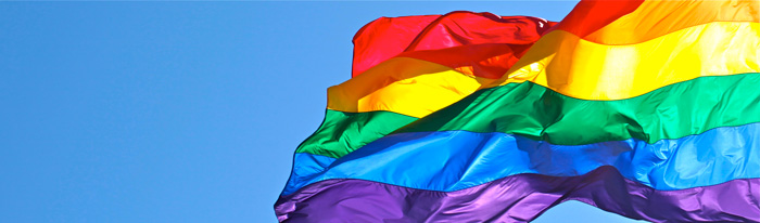 Rainbow_flag_wide